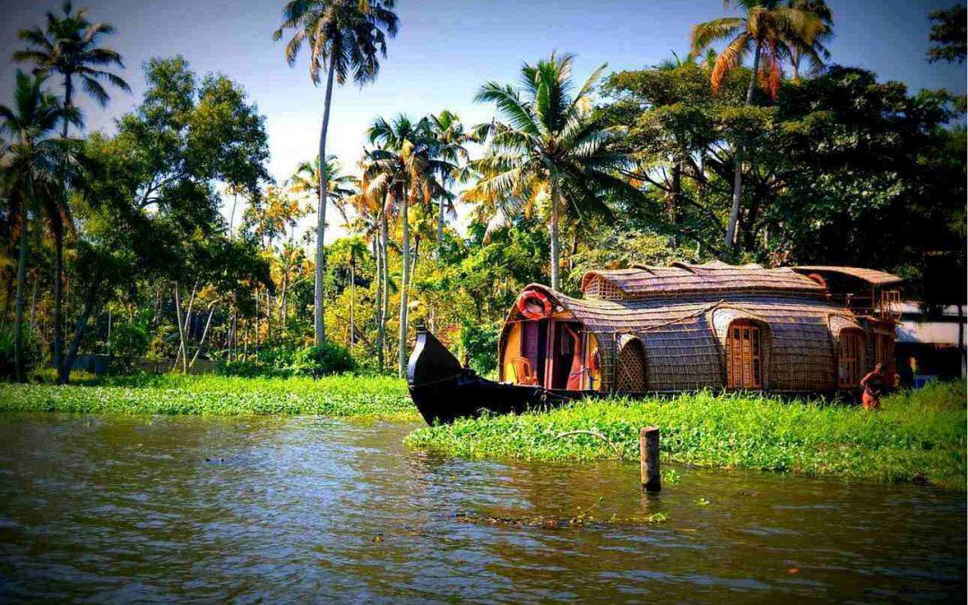 INDIA del SUD: Kerala e Tamil Nadu – 3/13 dicembre 2018 – 11 giorni/9 notti